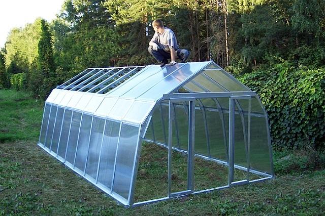 Теплицы для дачи и огорода: конструкции, материалы