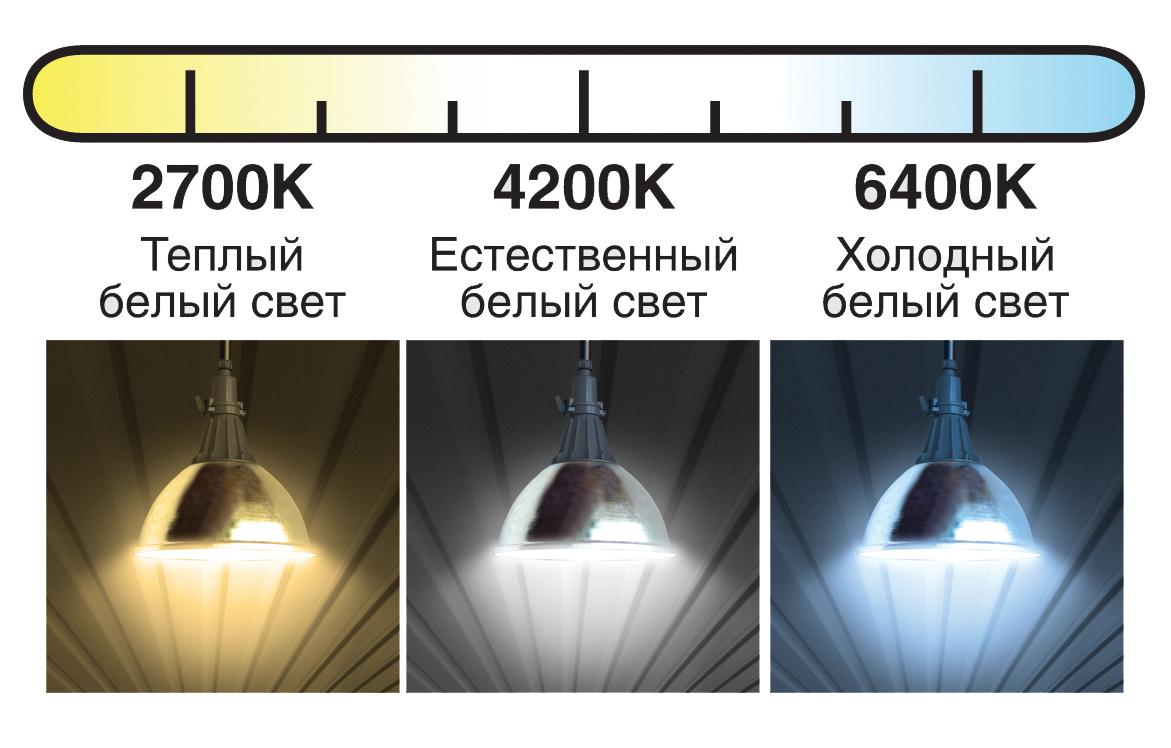 Чем отличается теплый свет от холодного в светодиодных лампах