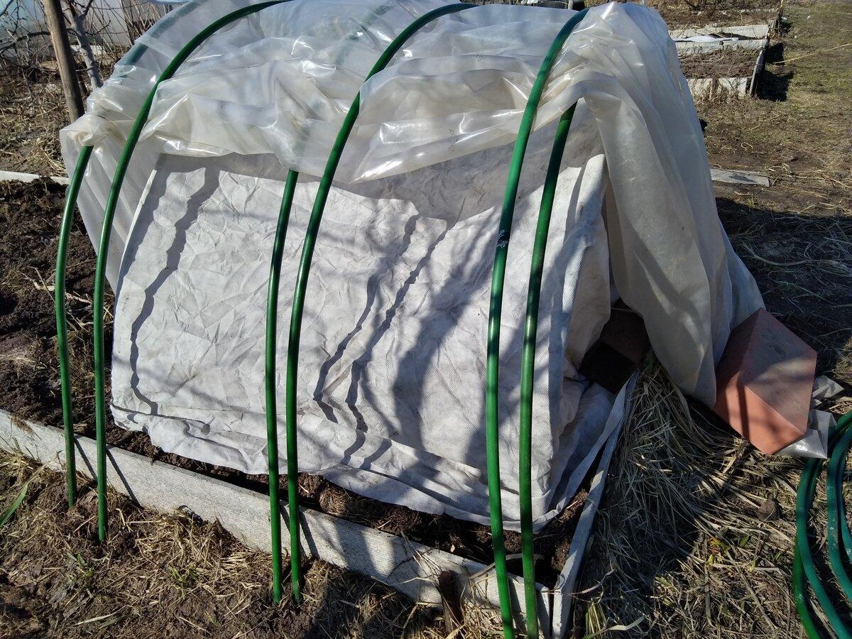 Простая теплица для дачников во время самоизоляции: пошаговая инструкция и необходимые материалы