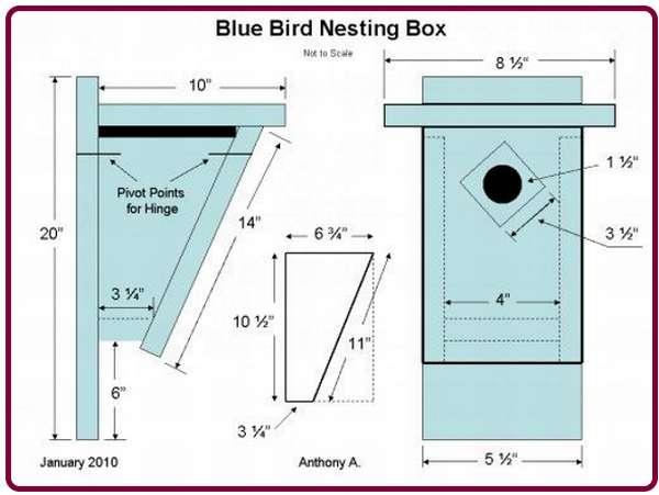 Как сделать скворечник: из досок и бревна для разных птиц