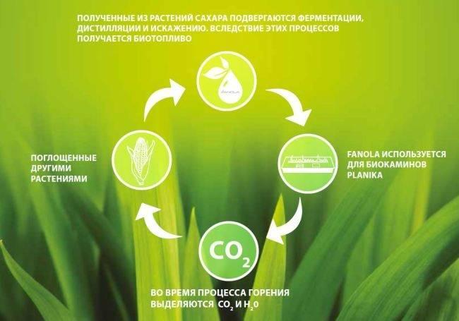 Что такое биотопливо в каминах и в чем его особенность