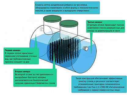 Очистка стоков при помощи грунтово-корневой системы