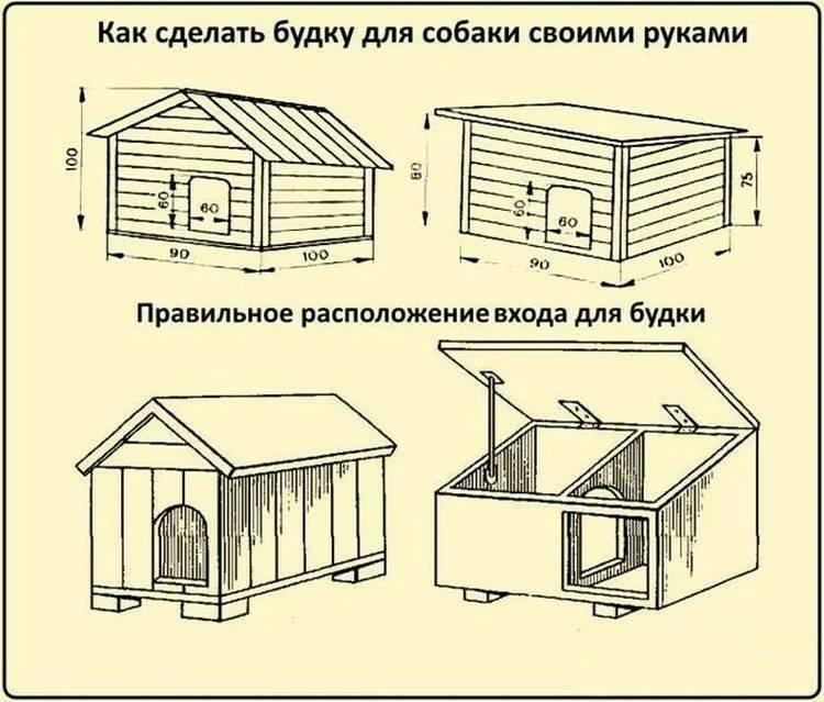 Как построить вольер для собаки своими руками