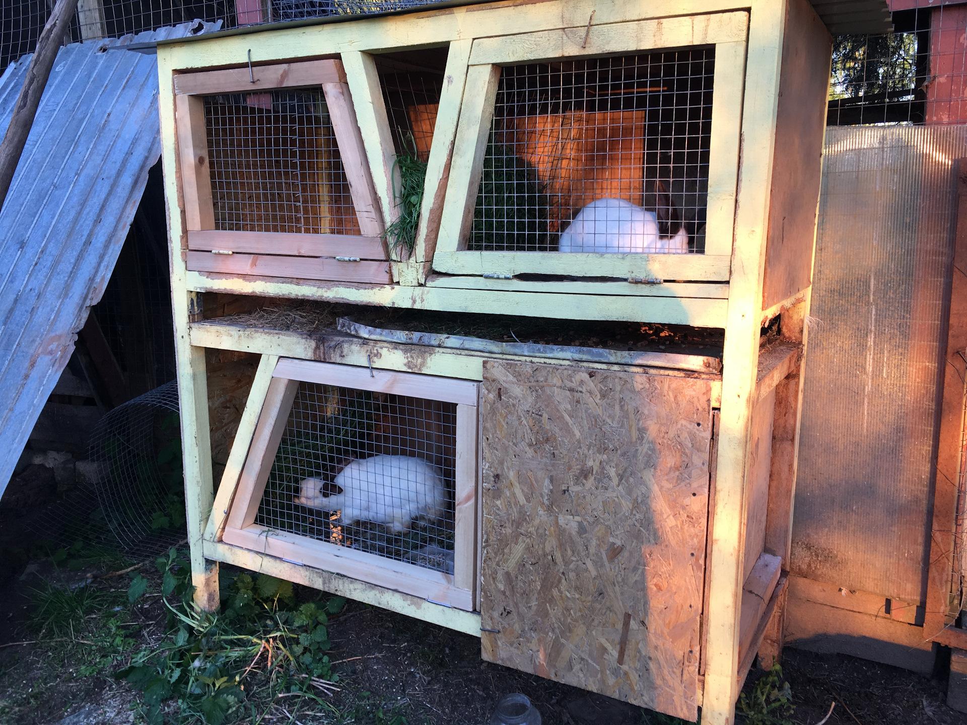 Как сделать крольчатник