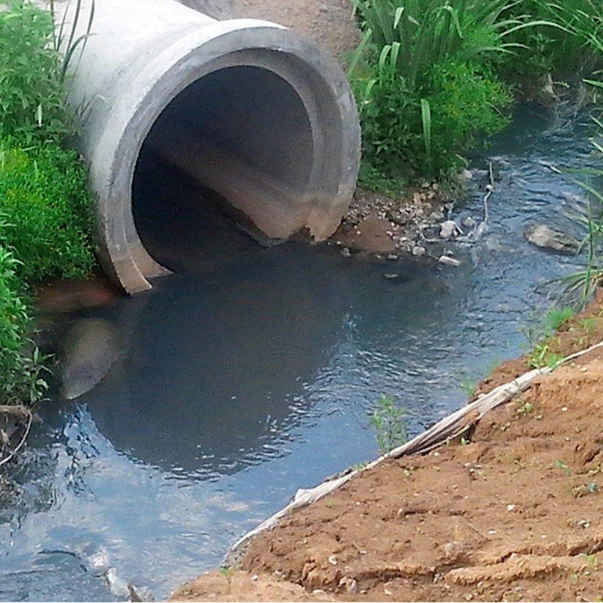 Куда сливается канализация