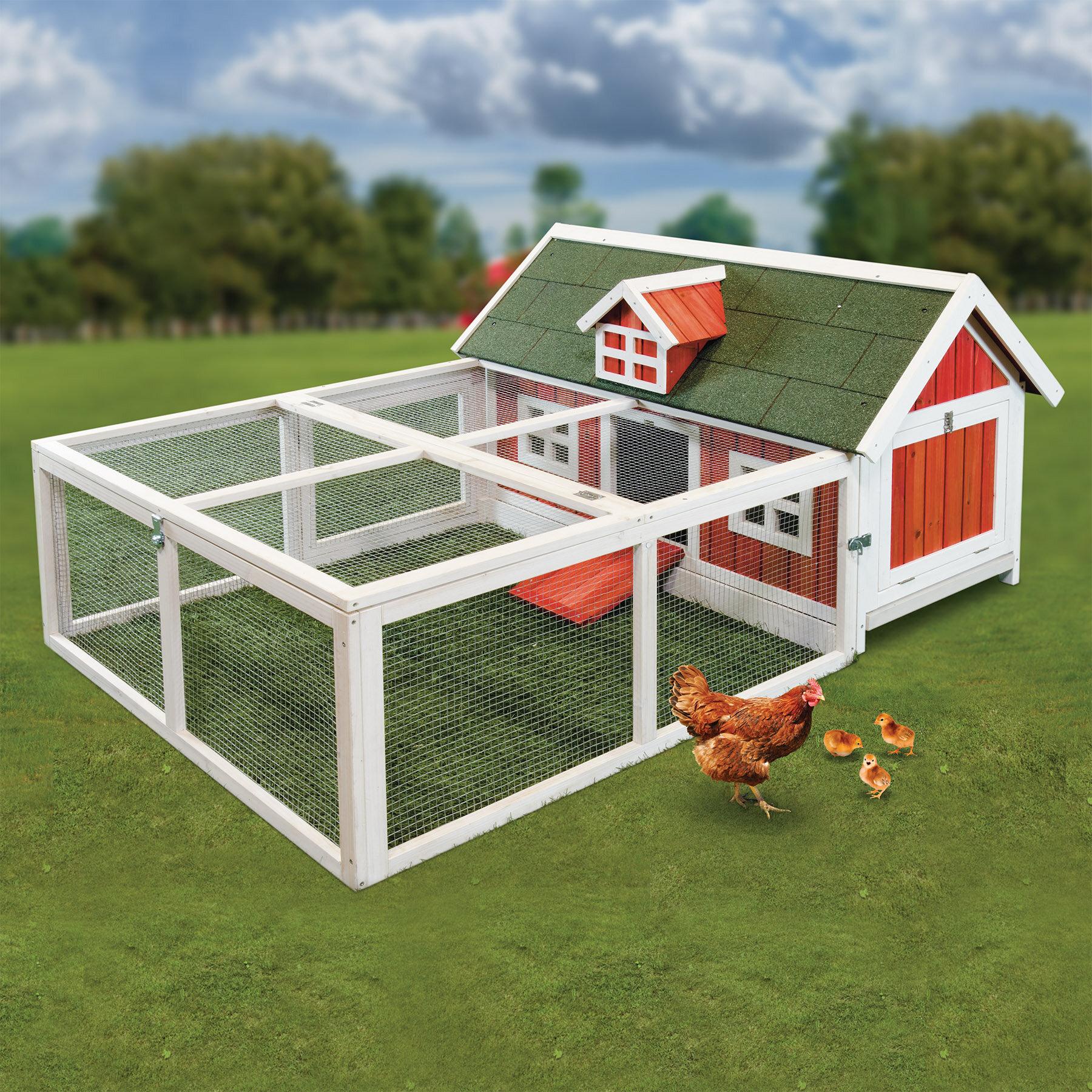 Как построить курятник на лето с выгулом