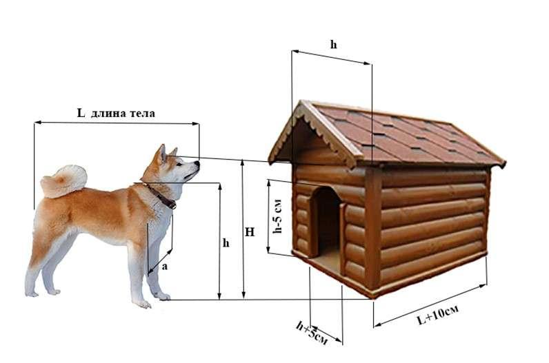 Будка для собаки своими руками: используем чертежи